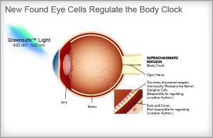 Light Therapy Eye Chart